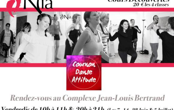 Juin: Découverte du Nia avec Cournon Danse Attitude